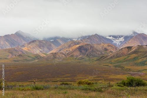 Fototapeta Scenic Denali National Park Alaska Autumn Landscape obraz na płótnie