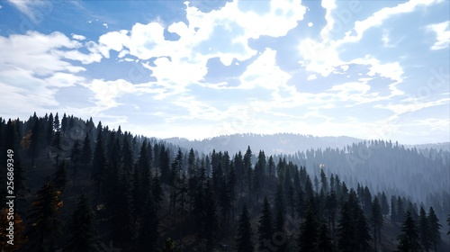 Poster Morning with fog Landscape - View of a forest at evening sun shines over hill