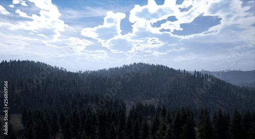 Poster Morning with fog Landscape - View of a forest with mountain in the background at day