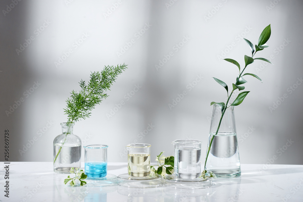 Fototapeta laboratory experiment and research with leaf, oil and ingredient extract for natural beauty and organic skincare product the blank bottle for label ,bio science concept. alternative medicine. spa.