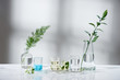 laboratory experiment and research with leaf, oil and ingredient extract for natural beauty and organic skincare product the blank bottle for label ,bio science concept. alternative medicine. spa.