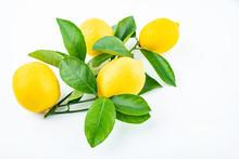 Freshly Picked Yellow Lemon On...