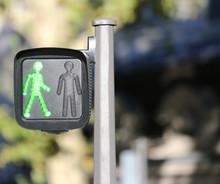 Pedestrian Signal Light With S...