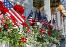 American Flags In Cape May