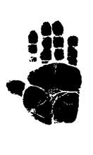 Footprint Imprint Of The Monke...