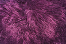 Texture Of Purple Fur. Artificial Color Fur. Fur In The Interior. Vegan Fur.