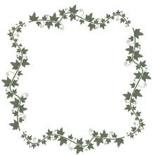 Ivy Vines With Green Leaves. Floral Vector Frame.Illustration Green Plant, Twig Of A Vine.