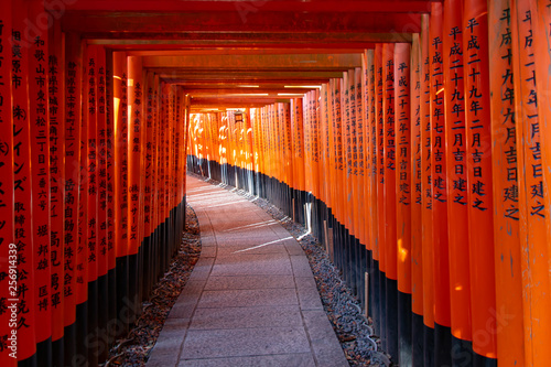 Poster Tokyo Red torii gates in Fushimi Inari shrine in Kyoto Japan without people