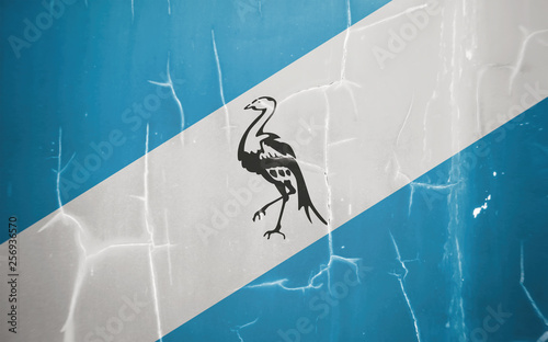 Fotografia  Flag of Ciskei (Since 1994 involved in South Africa).