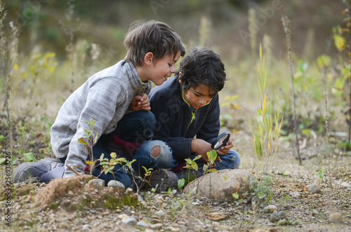two boys in nature sitting on the ground looking at a magnifying glass plants Fototapet