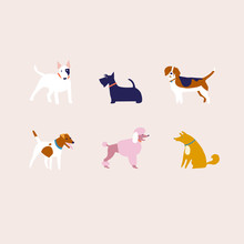 Breed Of Dogs Illustration In Vector