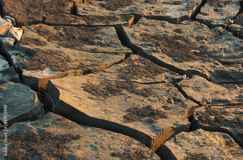 Fotografie, Obraz  Close up view of dry and cracked soil, Baton Rouge, Louisiana.