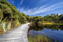 Lake Wilkie Walkway, Catlins, ...