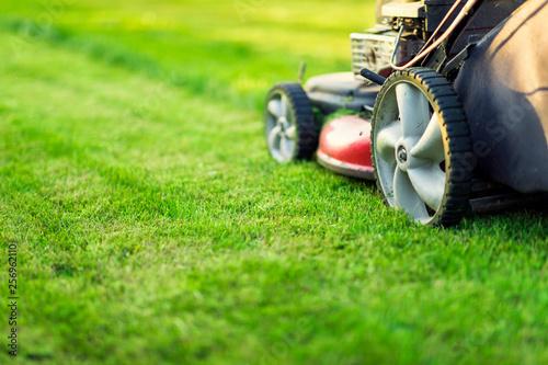 Canvas Print Lawn mower cutting green grass
