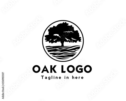 Circle oak tree logo design inspiration Fototapet