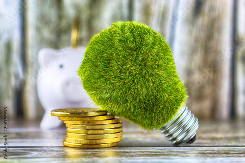 Fototapeta Piggy bank, green eco light bulb with grass and golden coins on wooden background. Renewable energy concept. Electricity prices, energy saving in the household. obraz