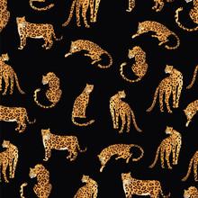 Leopard Pattern Illustration