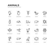 Set Of 20 Line Icons Such As Ostrich, Colibri, Dragonflay, Hyena, Mink, Ant Eater, Penguin, Skunk, Silverfish, Deadlock. Animals Outline Thin Icons Collection. Editable 64x64 Stroke