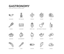 Set Of 20 Line Icons Such As Nut, Gooseberry, Nachos, Butternut Squash, Beer Can, Lasagne, Whisk, Floss, Dough, Hot Sauce. Gastronomy Outline Thin Icons Collection. Editable 64x64 Stroke