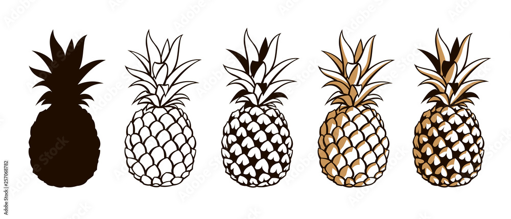 Fototapeta collection of pineapple tropical fruits isolated on white background