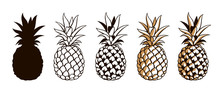 Collection Of Pineapple Tropic...