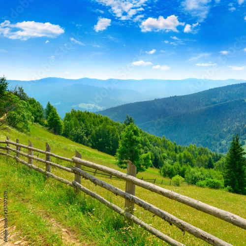 Obraz View of mountain meadows and blue sky in Carpathians. - fototapety do salonu