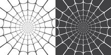 Vector Illustration Of Spider Web