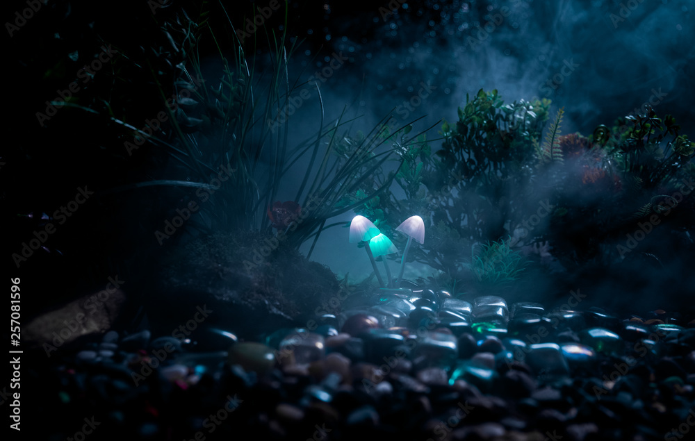 Fototapety, obrazy: Fantasy glowing mushrooms in mystery dark forest close-up. Beautiful macro shot of magic mushroom or souls lost in avatar forest. Fairy lights on background with fog.