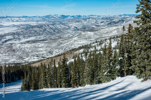 The ski slopes of Steamboat Springs, in the Rocky Mountains of Colorado, lined by Pine and Aspen trees.