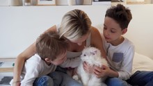 Happy Weekend - Young Mom With Happy Children Playing In Bed And Ginger White Cat Lying On The Bed In Real Interior