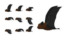 Bat Flying Motion Sequence Animation Cartoon Vector Illustration