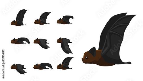 Fotomural Bat Flying Motion Sequence Animation Cartoon Vector Illustration
