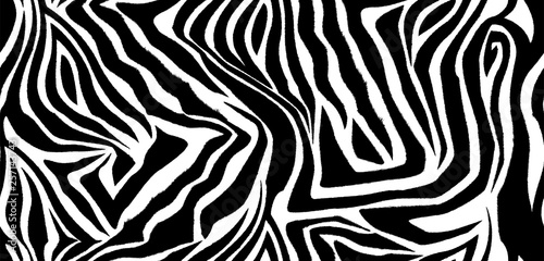 Zebra skin seamless vector pattern. Striped black and white wool texture of the animal for corporate identity, clothing or printing on paper. - 257143743