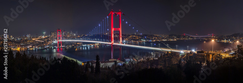 Bosphorus Panorama. Bosphorus bridge in Istanbul Turkey Wallpaper Mural