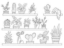 Shelves Set Graphic Black White Isolated Plant Pot Sketch Illustration Vector