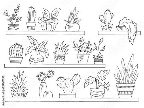 Fototapeta Shelves set graphic black white isolated plant pot sketch illustration vector