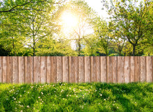 Wooden Garden Fence At Backyard In Spring