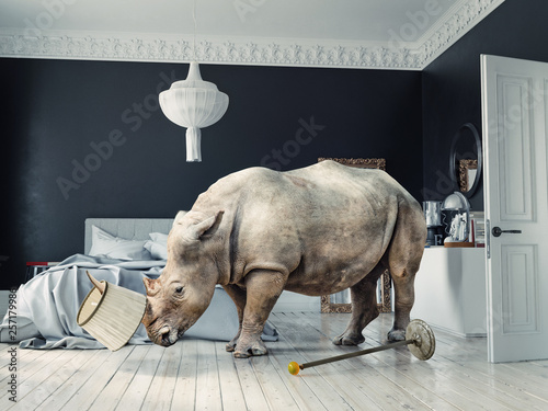 Fotografija  wild rhino in the luxury bedroom