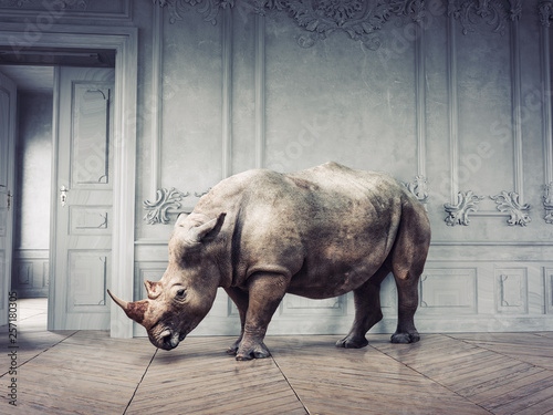 Spoed Fotobehang Neushoorn wild rhino in the luxury room