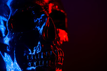 Ancient Human Skull Head Close-up. Neon Blue And Red Light. Spooky And Sinister. Glamour, Disco, Halloween Concept.