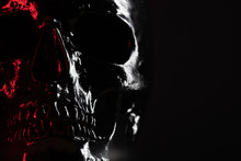 Shining Skull Head On Dark Background With Neon Red Light. Halloween Celebration, Glamour, Style Concept. Fear And Horror. Copy Space.