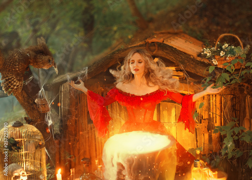 Canvas Print pretty blond lady above a big magic cauldron with smoke, forest nymph in long br