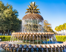 Pineapple Fountain In Waterfro...