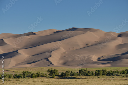 Αφίσα  High Dune in Great Sand Dunes National Park and Preserve in the morning (Saguach