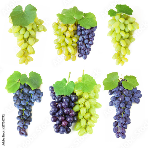 grapes with leaves set isolated on white background Canvas