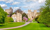 Fototapeta Londyn - Long walk to Windsor castle in spring, London suburbs, UK