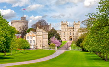 Long Walk To Windsor Castle In...
