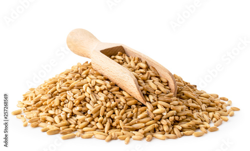 Obraz Heap of oat grain with a wooden shovel on a white, isolated. - fototapety do salonu