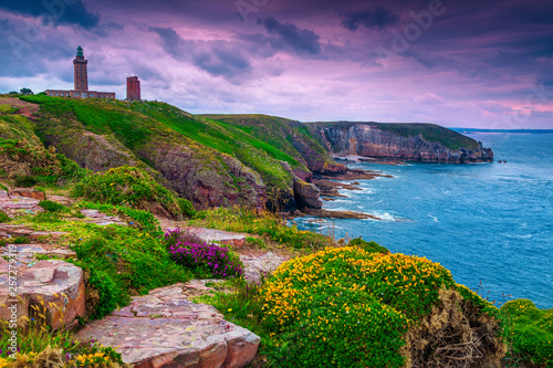 Wonderful rocky and flowery coastline with lighthouse, Cap Frehel, France Wallpaper Mural