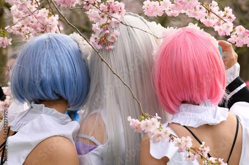 Photo  Cosplay Girls unter Kirschblüten